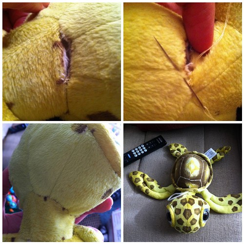 Sewing Mr. Turtle
