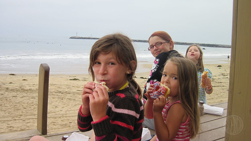 doughnuts on the lifeguard tower