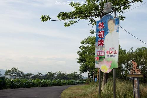 20110620白河蓮花季-5735