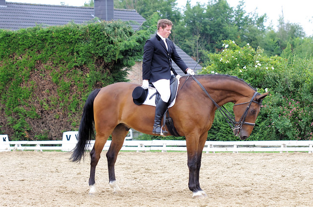 Remicourt 20110625 120
