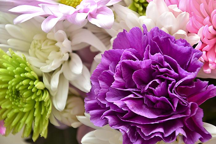 Flowers2 edited