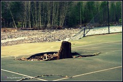 Flood Damage (.betsy.anderson.) Tags: oregon flood stump picnik tenniscourt sandyriver flooddamage sandyoregon