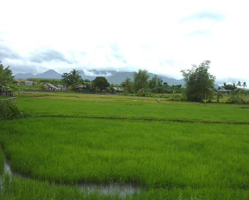 Negros-San Carlos-Bacolod (143)