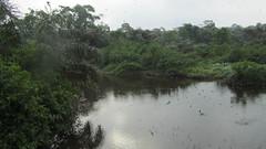 West Africa-2576