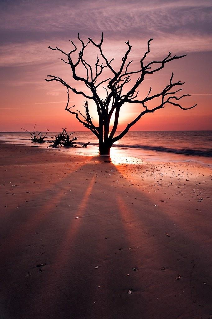 Shadowy Figure, Botany Bay, Edisto Island,SC