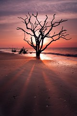 Shadowy Figure, Botany Bay, Edisto Island,SC by Joseph Rossbach(www.josephrossbach.com)