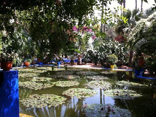 <span>marrakech</span>Yves saint laurent garden #1<br><br><p class='tag'>tag:<br/>luoghi | marrakech | viaggio | </p>