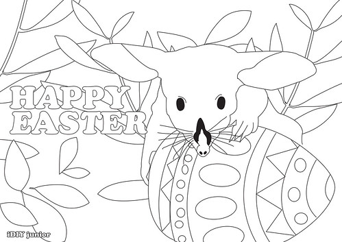 easter bilby colour in