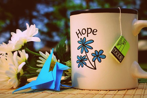 Crane for Hope #47