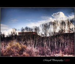 The house on the hill - HDR - TOKINA 135mm f2,8 M42 (Margall photography) Tags: house tree forest canon photography tokina marco f28 hdr 135mm 30d galletto margall