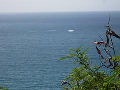 IMG_1812 (Anna Kipervaser) Tags: ocean beauty island hawaii peace oahu tranquility snorkeling pele monkseal