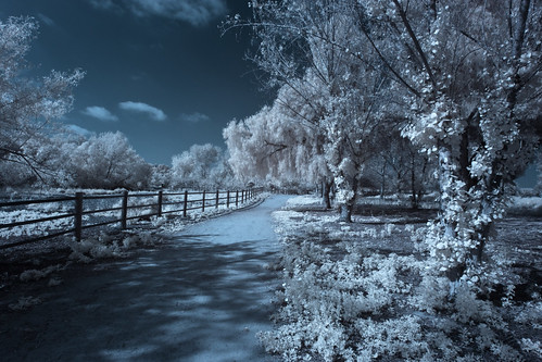 Sweetwater County Park (Infrared) [EXPLORED]