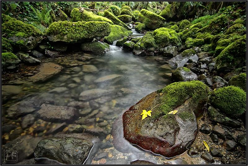 Cantabria. La España verde y húmeda.