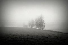 Downtime #2 13110012 (filipe franco) Tags: fog analog landscape analgica nebel paisagem kodakbw400cn nebbia fotoblog niebla dimma nevoeiro canoneos300  kubrickslook