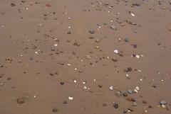 (Skellibobs) Tags: sea mist beach fog coast sand shell pebbles east fret reighton