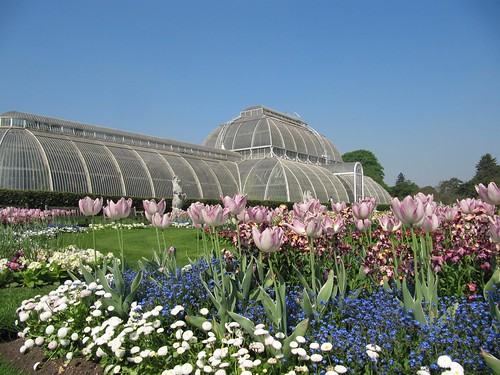 Kew Gardens 7734