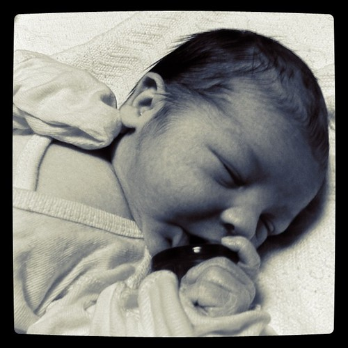 Nico: One Day Old! by tatopuig