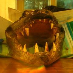 f64 alligator head