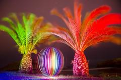 LP Palmeras Barro Beach (Athalfred DKL) Tags: light lightpainting luz night painting children long exposure nocturnal lp nocturna flashlight cod con multicolor pintar darklight larga exposicin lightgraff