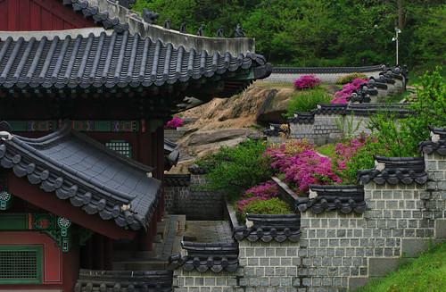 South Korea flickr photo