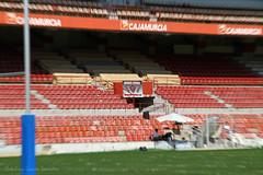 Semifinal.Murcia Cobras Jr.-Argentona Bocs Jr.