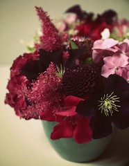 purple dahlia (hanna.bi) Tags: dahlia flowers terrace clematis hydrangea oleander astilbe spirea hannabi