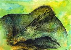 sleeping beauty (steve loya) Tags: art animals illustration drawing wildlife illustrationfriday antelope mammals