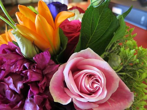 program flowers