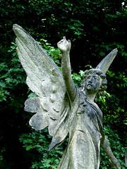 Leprous angel