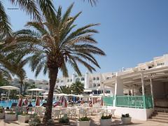 """Wish you were here""EL  Mouradi_Skanes_Beach_Hotel..   Tunisian Republic   al-Jumhriyya at-Tnisiyya Rpublique tunisienne ( TheFourSeasonsPhotography&more.) Tags: lighting blue trees vacation sun holiday pool hotel moving amazing skies republic shadows view tunisia postcard culture sunny el palm explore enjoy striking discovery rpublique breathtaking wishyouwerehere discover tunisian  picturepostcard  tunisienne  aljumhriyya attnisiyya tunisiajune2011 mouradiskanesbeachhotel mouradiskanesbeach apicturepostcard"