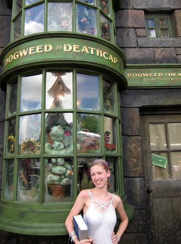 Hogsmeade Shop by Danalynn C
