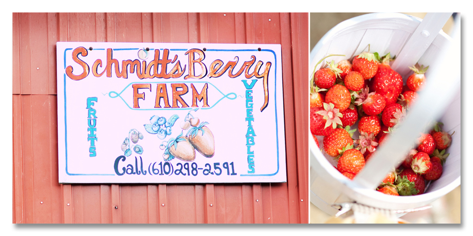Schmidt's Berry Farm COLLAGE2