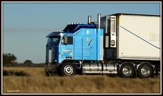 Browns slipways K100 Aerodyne (quarterdeck888) Tags: trucks kenworth k100 bdouble brownsslipways jerilderietrucks