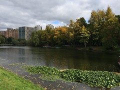 September (Verlink) Tags:         weather season nature russia moscow vorontsovo park autumn 2016 september