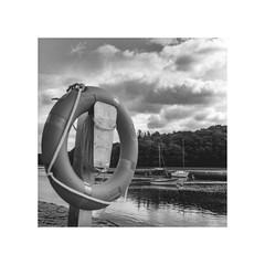 la boue,son fil d'ariane..     pour la vie (michel lebedel) Tags: bretagne breiz bzh bateau belon hasselblad 500cm 6x6 argentique square rivire riecbelon