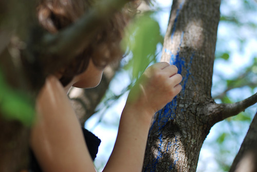 V in tree 005