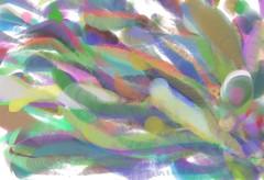 Immagine astratta con scie colorate