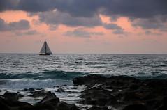 (cassidyhutchinson) Tags: ocean morning pink blue brown black sailboat sunrise boat rocks waves purple jetty sailor crashing wavescrashing