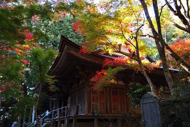 20101119_135802_室生寺_金堂(国宝)