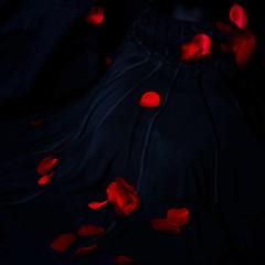 War Zone (Christine Lebrasseur) Tags: blue red people woman black france flower art fall 6x6 nature canon petals movement dress action body motionblur fr paho onblack gironde 500x500 challengeyouwinner ltytrx5 ltytr1 saintloubes allrightsreservedchristinelebrasseur absoluterouge