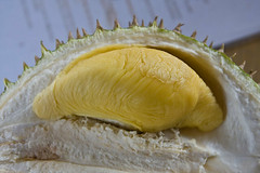 raub durian orchard eddie yong 38328_419024368275_693313275_4522584_2408327_n