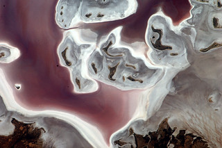Lake Frome, South Australia