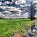 Avebury: Silbury Hill