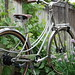 Mezzaluna Mixte in the Grape Vine  By: Muse Cycles
