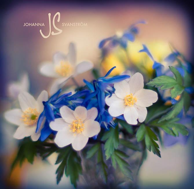 20111119_namnlöst_0052-Redigera.jpg