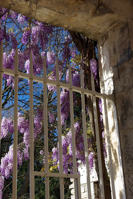 Arles, Southern France