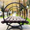 Bench #1 (. Jianwei .) Tags: wood city trees urban metal closeup vancouver bench circle 50mm downtown dof minolta bokeh geometry sony symmetry fragment f17 a500 jianwei explored 几何 散景 kemily 同心圆 浅景深 重复元素