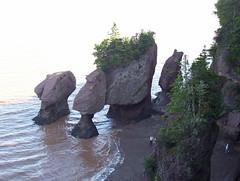 New Brunswick - Hopewell Rocks (JeanLemieux91) Tags: new trees summer rocks tide august brunswick du des atlantic arbres cap nouveaubrunswick été hopewell maritimes rochers plantes roches 2007 août provinces marée altantique