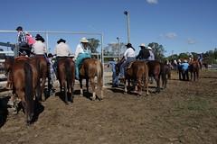 IMG_6363 (Natashatashtash) Tags: rodeo brisbanemeetup daybororodeo2011