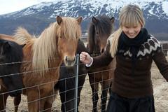 IMG_5943 (IWDRutledge) Tags: travel wedding horses volcano iceland may lagoon reykjavik glacier april 2011 islandic